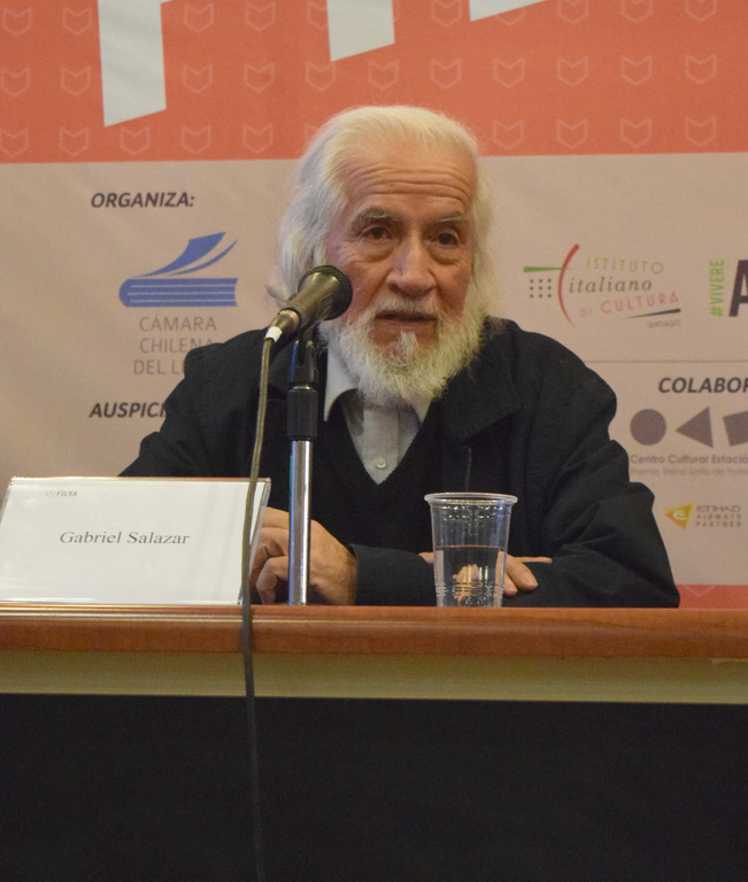 Gabriel Salazar Vergara